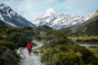 Best Free Walking Routes in New Zealand